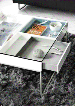 BoConcept_ Coffee Tables w Storage