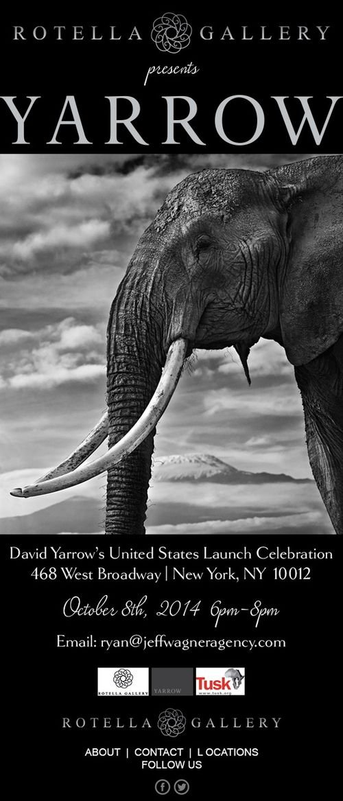 David Yaroow's U.S. Launch Celebration Oct 8 @ Rotella Gallery
